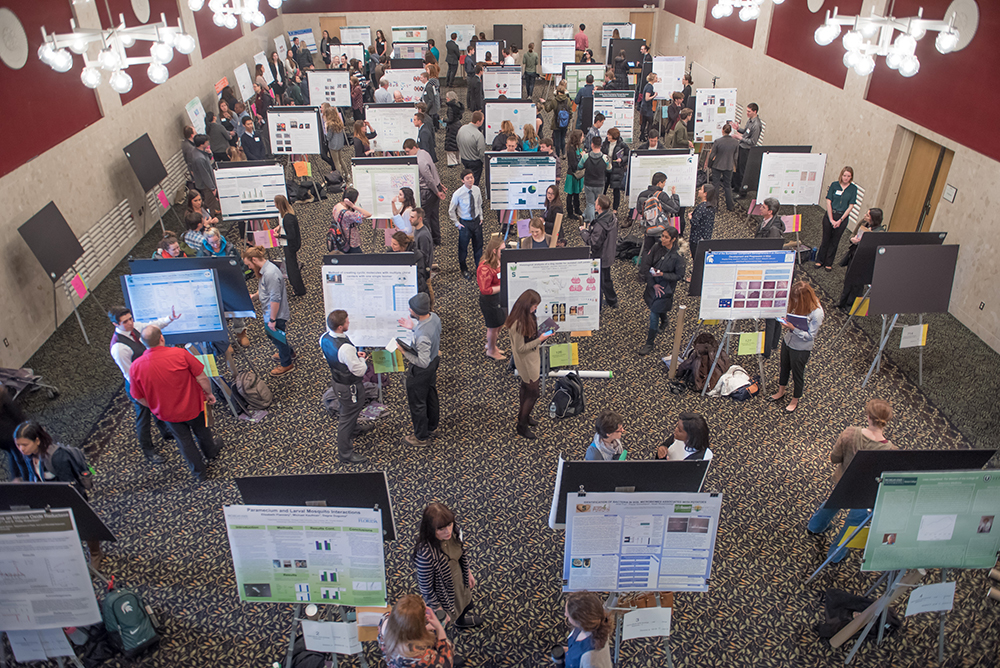 Image of MSU undergraduate students presenting their research posters to community members